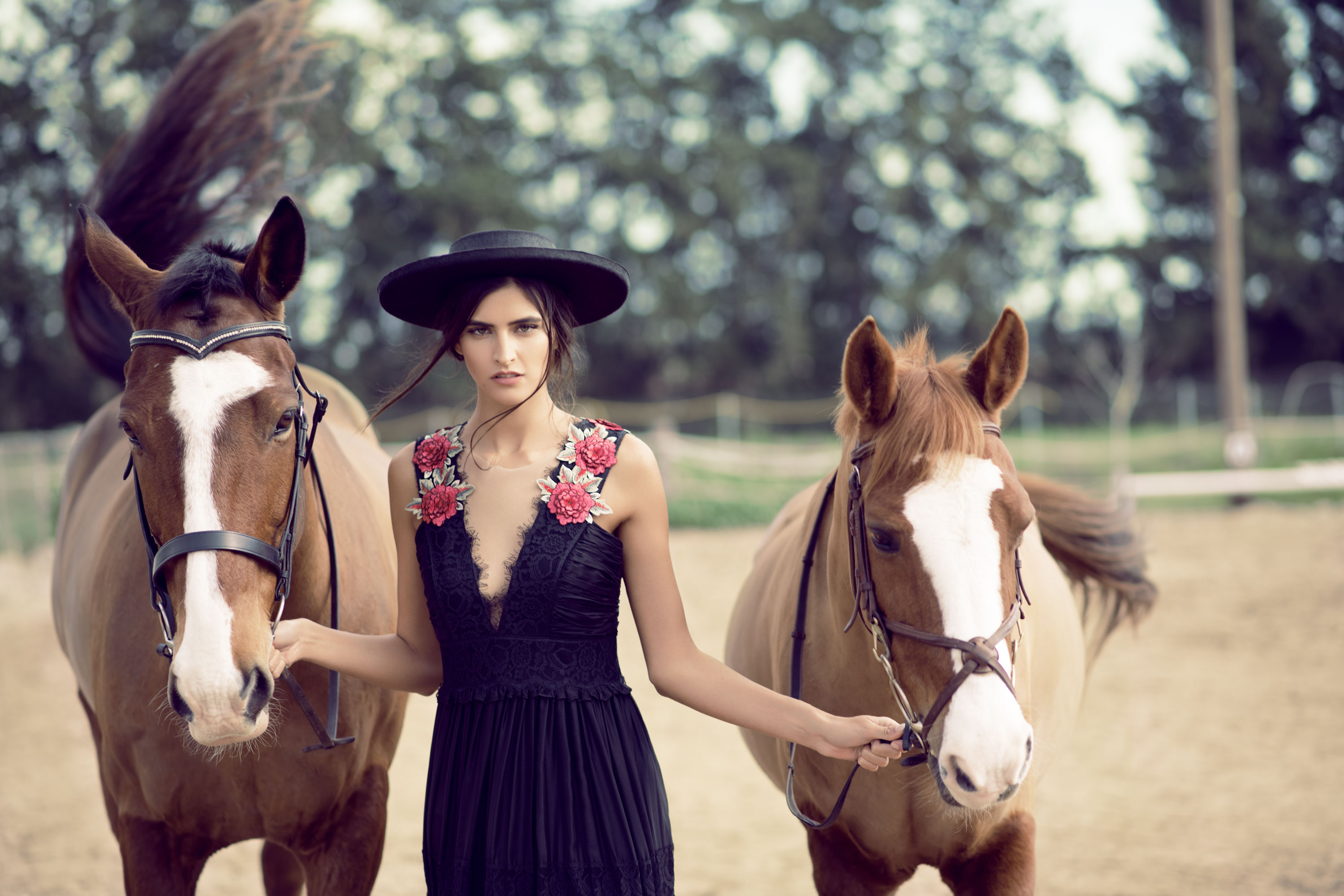 Terra Nostra Editorial with Horses in Paphos